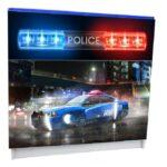 Полиция синяя. 3 ящика