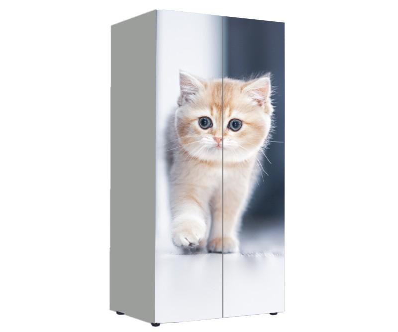шкаф в детскую с котом рыжим