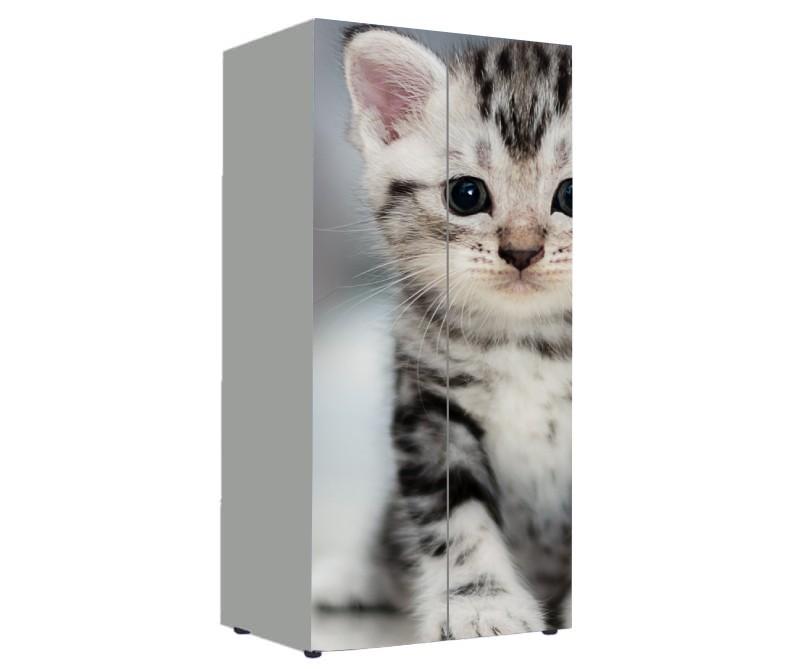шкаф в детскую с котом серым