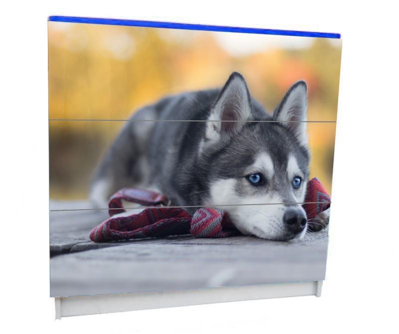 детский комод на 3 ящика с собачкой хаски