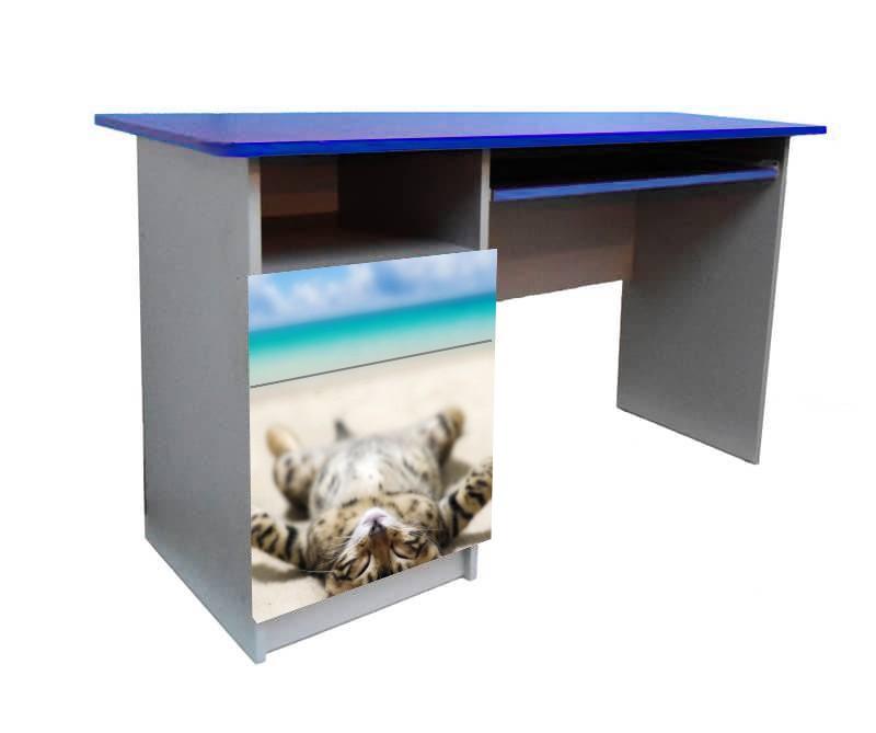 письменный стол котик на пляже