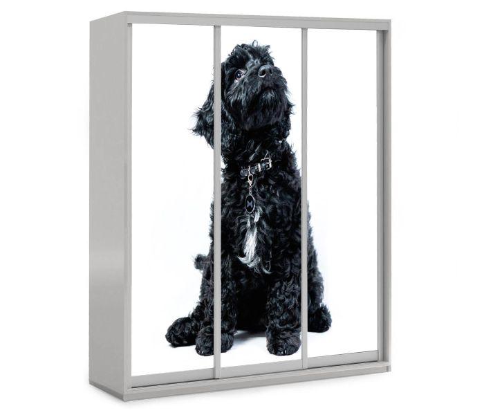 детский шкаф купе 3 двери собачка черная