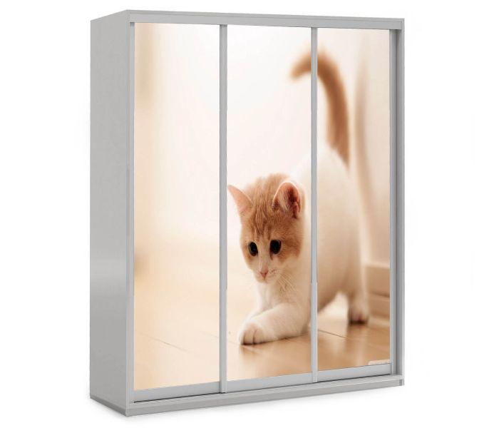 детский шкаф купе 3 дверки котенок