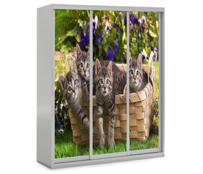 детский шкаф купе 3 дверки котятки