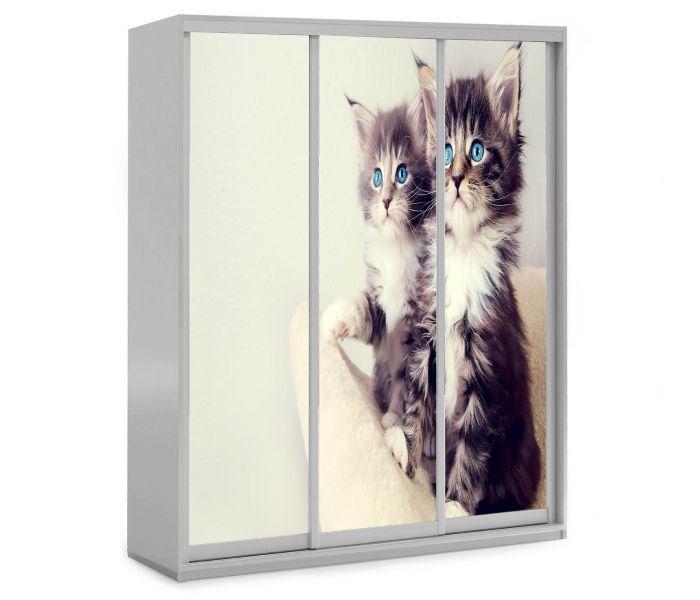 детский шкаф купе 3 дверки котики