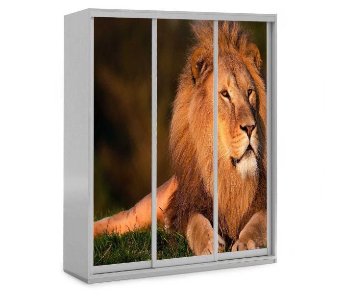 детский шкаф купе 3 дверки со львом