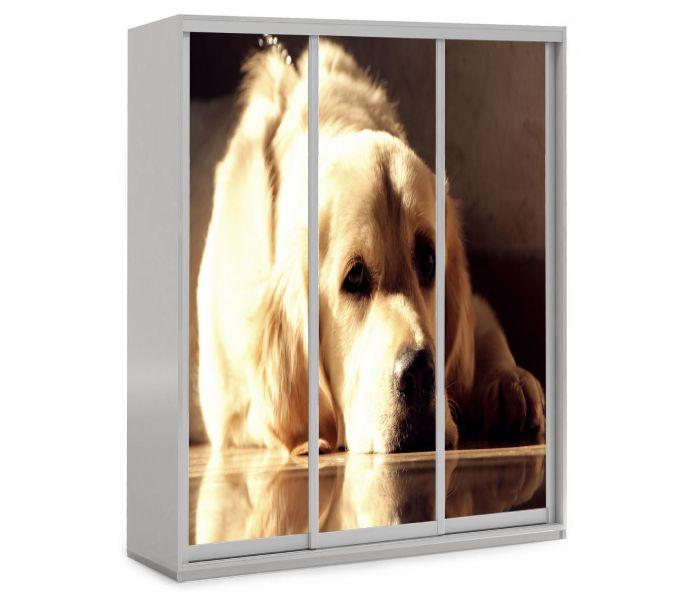 детский шкаф купе 3 двери собачка
