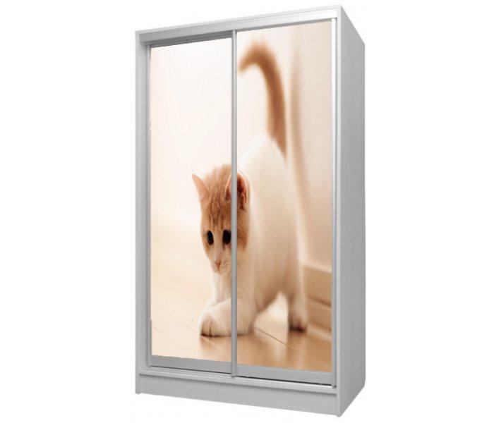 детский шкаф купе 2 дверки котик