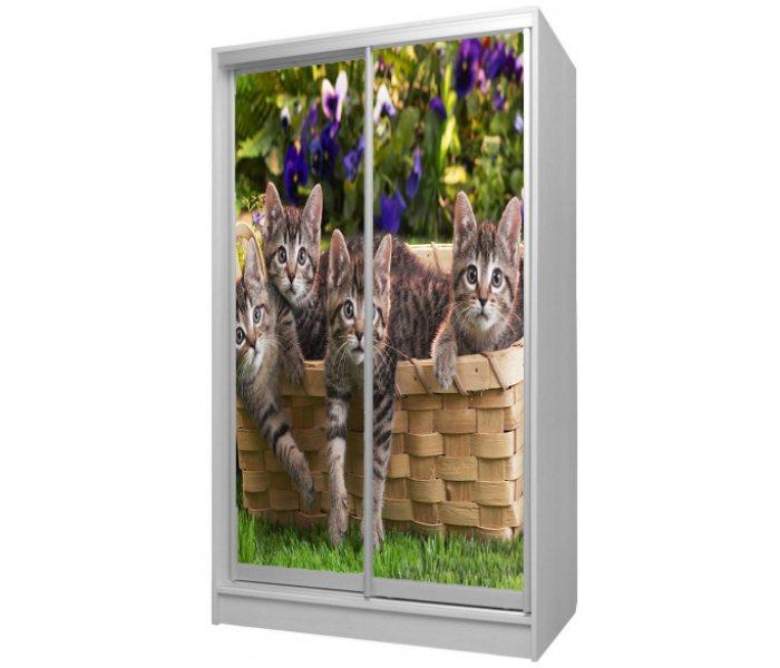 детский шкаф купе 2 дверки котики