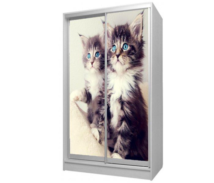 детский шкаф купе 2 дверки с котикаим