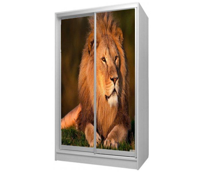 детский шкаф купе 2 дверки с фото льва