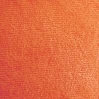 Розана оранжевый